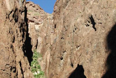 Palm Canyon Kofa National Wildlife Refuge in Yuma Arizona - winter 2002.