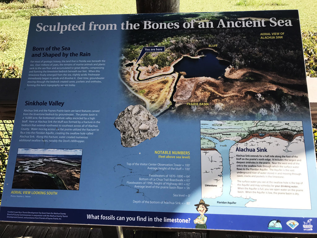 Sign depicting the history of An Ancient Sea - Alachua Sink