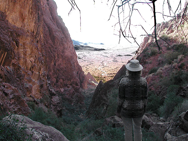 View over the the canyon - Palm Canyon Yuma, Arizona - Winter 2002