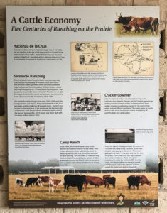 A sign explaining - A Cattle Economy, five centuries of ranching on the prairie.